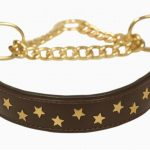 half-check-with-brass-chain-star
